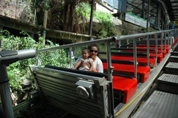 scenic rail
