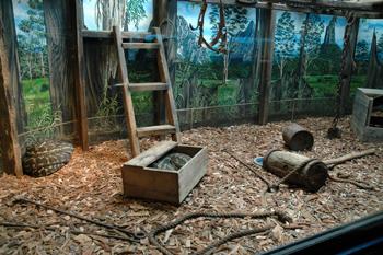 aussie zoo