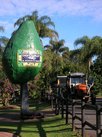 tropical fruit world