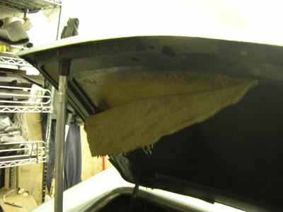 trunk lid